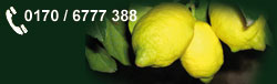 zitronenlust rote zitrone citrus limon rosso. Black Bedroom Furniture Sets. Home Design Ideas